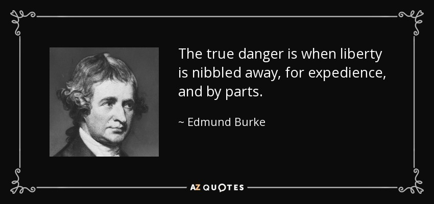 The true danger is when liberty is nibbled away, for expedience, and by parts. - Edmund Burke
