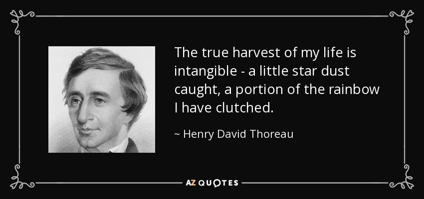 The true harvest of my life is intangible - a little star dust caught, a portion of the rainbow I have clutched. - Henry David Thoreau