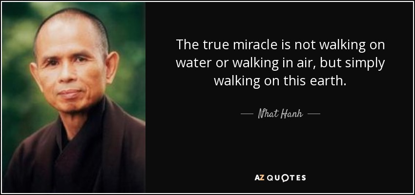 The true miracle is not walking on water or walking in air, but simply walking on this earth. - Nhat Hanh