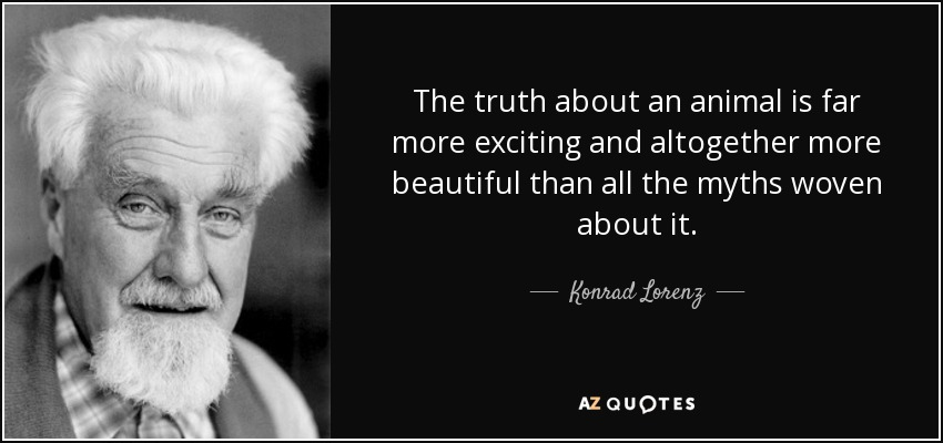 The truth about an animal is far more exciting and altogether more beautiful than all the myths woven about it. - Konrad Lorenz