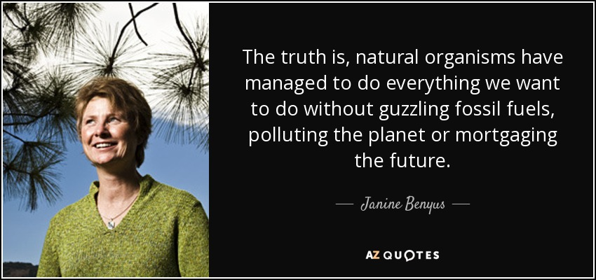 The truth is, natural organisms have managed to do everything we want to do without guzzling fossil fuels, polluting the planet or mortgaging the future. - Janine Benyus