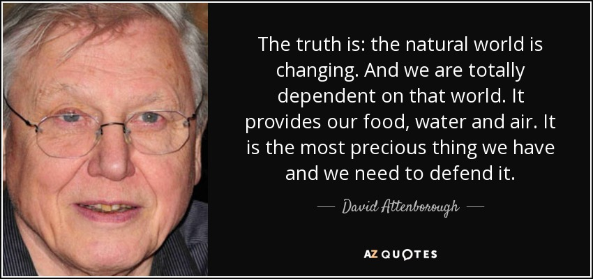 The truth is: the natural world is changing. And we are totally dependent on that world. It provides our food, water and air. It is the most precious thing we have and we need to defend it. - David Attenborough