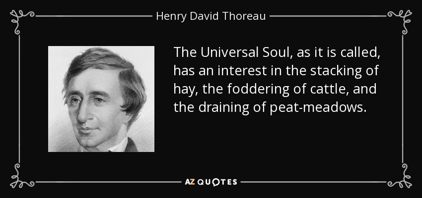 The Universal Soul, as it is called, has an interest in the stacking of hay, the foddering of cattle, and the draining of peat-meadows. - Henry David Thoreau