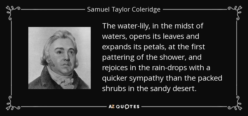 The water-lily, in the midst of waters, opens its leaves and expands its petals, at the first pattering of the shower, and rejoices in the rain-drops with a quicker sympathy than the packed shrubs in the sandy desert. - Samuel Taylor Coleridge
