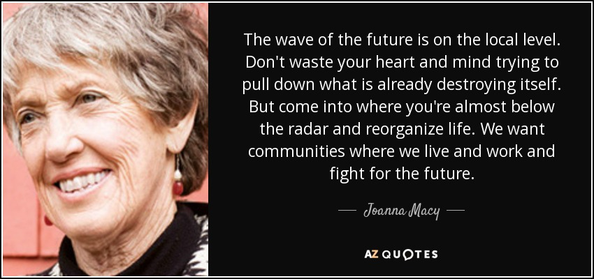 The wave of the future is on the local level. Don't waste your heart and mind trying to pull down what is already destroying itself. But come into where you're almost below the radar and reorganize life. We want communities where we live and work and fight for the future. - Joanna Macy