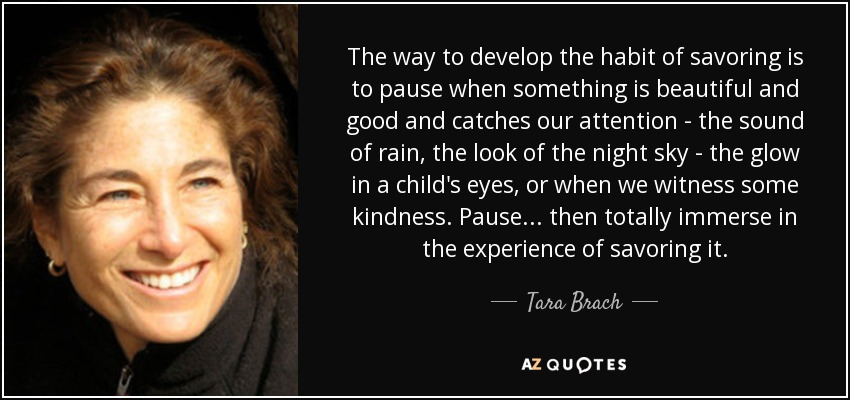 The way to develop the habit of savoring is to pause when something is beautiful and good and catches our attention - the sound of rain, the look of the night sky - the glow in a child's eyes, or when we witness some kindness. Pause... then totally immerse in the experience of savoring it. - Tara Brach