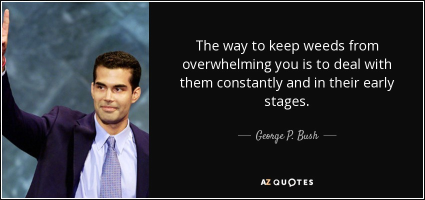 The way to keep weeds from overwhelming you is to deal with them constantly and in their early stages. - George P. Bush