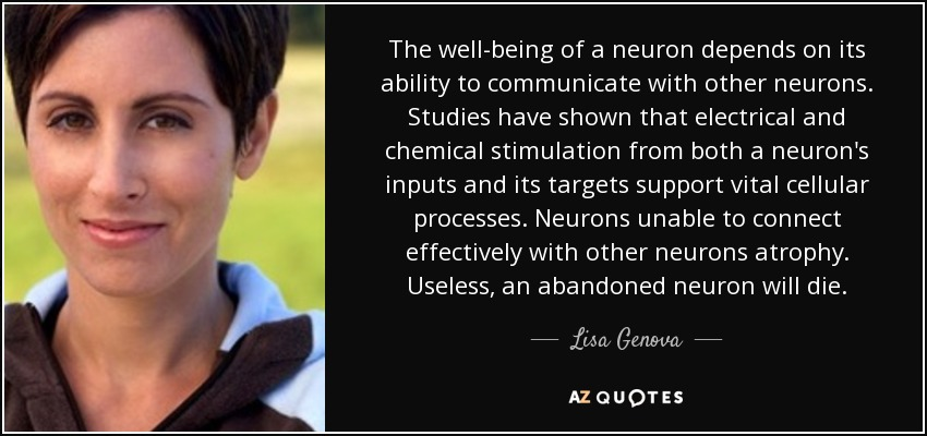 The well-being of a neuron depends on its ability to communicate with other neurons. Studies have shown that electrical and chemical stimulation from both a neuron's inputs and its targets support vital cellular processes. Neurons unable to connect effectively with other neurons atrophy. Useless, an abandoned neuron will die. - Lisa Genova