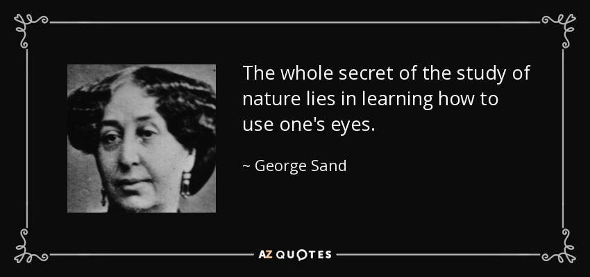 The whole secret of the study of nature lies in learning how to use one's eyes. - George Sand