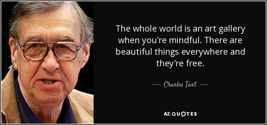 The whole world is an art gallery when you're mindful. There are beautiful things everywhere and they're free. - Charles Tart