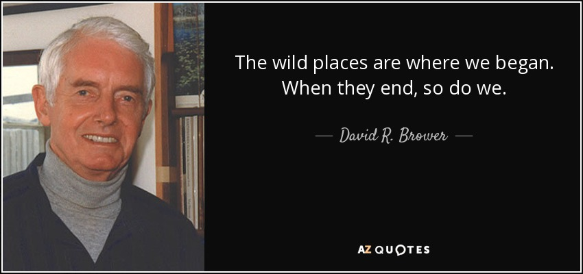 The wild places are where we began. When they end, so do we. - David R. Brower