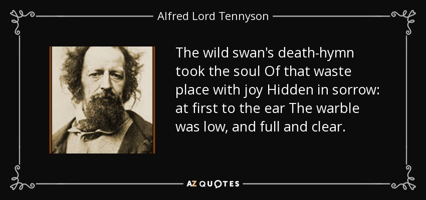The wild swan's death-hymn took the soul Of that waste place with joy Hidden in sorrow: at first to the ear The warble was low, and full and clear. - Alfred Lord Tennyson