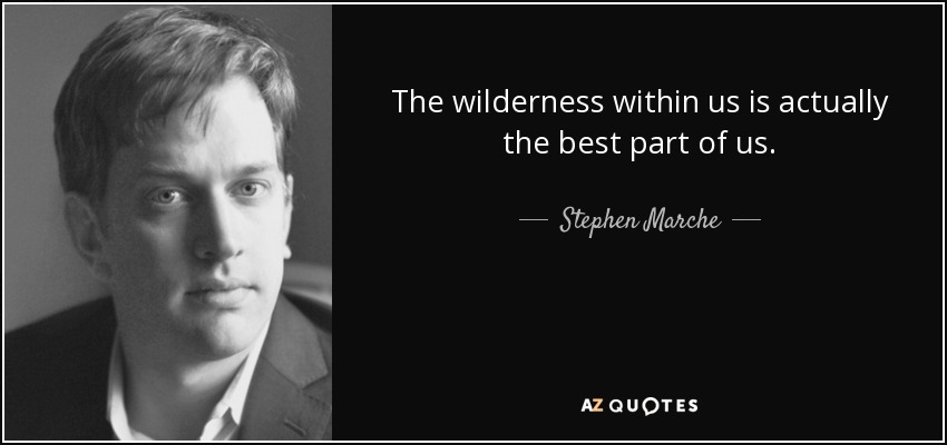 The wilderness within us is actually the best part of us. - Stephen Marche