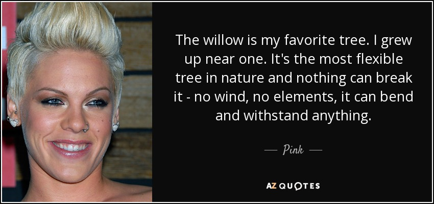 The willow is my favorite tree. I grew up near one. It's the most flexible tree in nature and nothing can break it - no wind, no elements, it can bend and withstand anything. - Pink