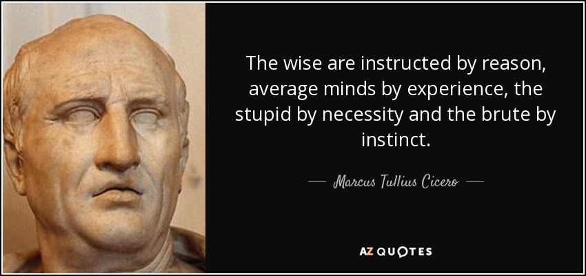 The wise are instructed by reason, average minds by experience, the stupid by necessity and the brute by instinct. - Marcus Tullius Cicero