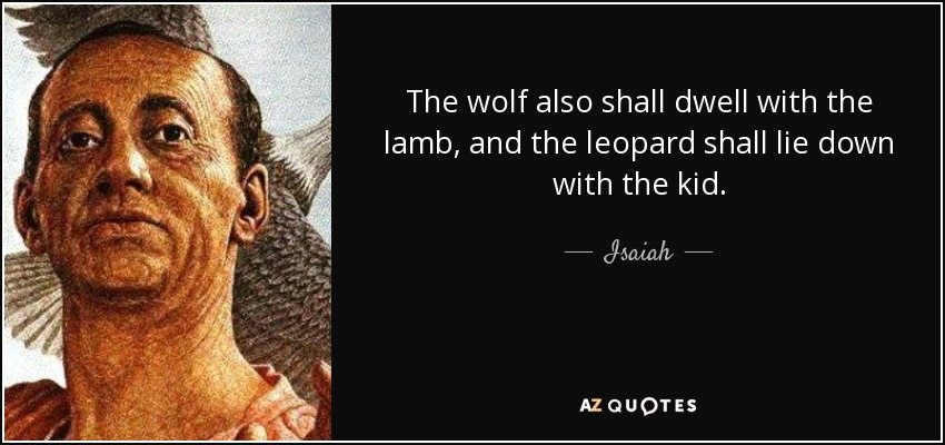 The wolf also shall dwell with the lamb, and the leopard shall lie down with the kid. - Isaiah