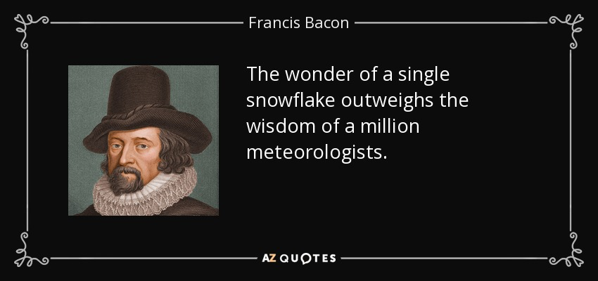 The wonder of a single snowflake outweighs the wisdom of a million meteorologists. - Francis Bacon