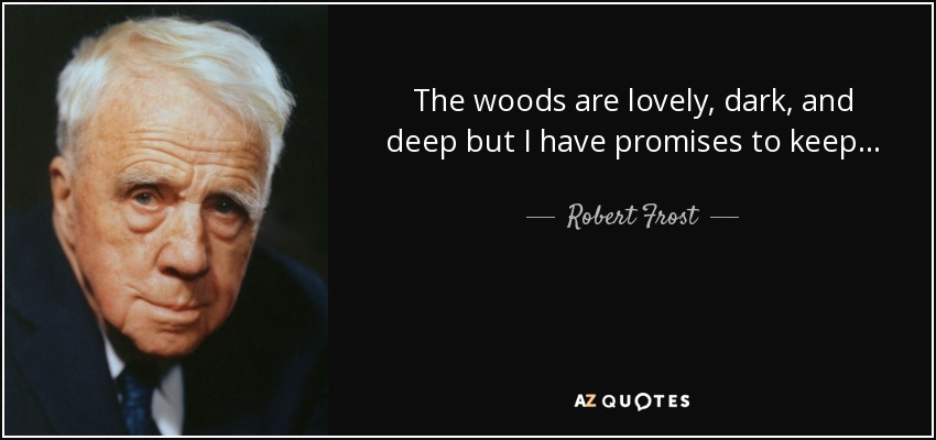 The woods are lovely, dark, and deep but I have promises to keep.... - Robert Frost