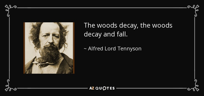 The woods decay, the woods decay and fall. - Alfred Lord Tennyson