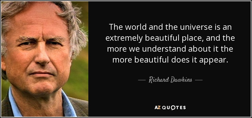 The world and the universe is an extremely beautiful place, and the more we understand about it the more beautiful does it appear. - Richard Dawkins