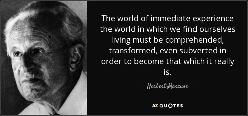 The world of immediate experience the world in which we find ourselves living must be comprehended, transformed, even subverted in order to become that which it really is. - Herbert Marcuse