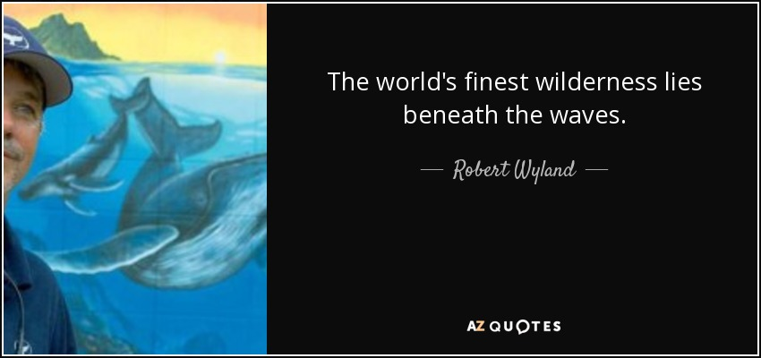 The world's finest wilderness lies beneath the waves. - Robert Wyland