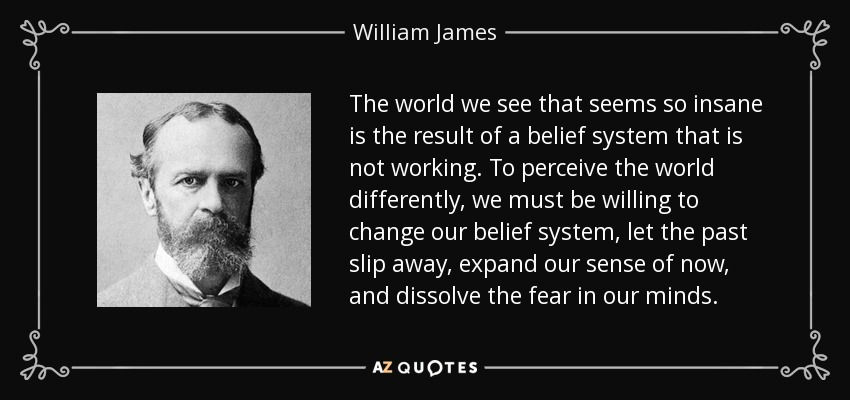The world we see that seems so insane is the result of a belief system that is not working. To perceive the world differently, we must be willing to change our belief system, let the past slip away, expand our sense of now, and dissolve the fear in our minds. - William James