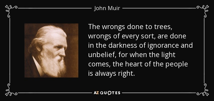 The wrongs done to trees, wrongs of every sort, are done in the darkness of ignorance and unbelief, for when the light comes, the heart of the people is always right. - John Muir