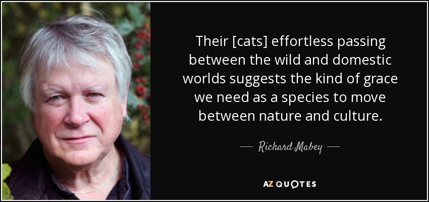 Their [cats] effortless passing between the wild and domestic worlds suggests the kind of grace we need as a species to move between nature and culture. - Richard Mabey