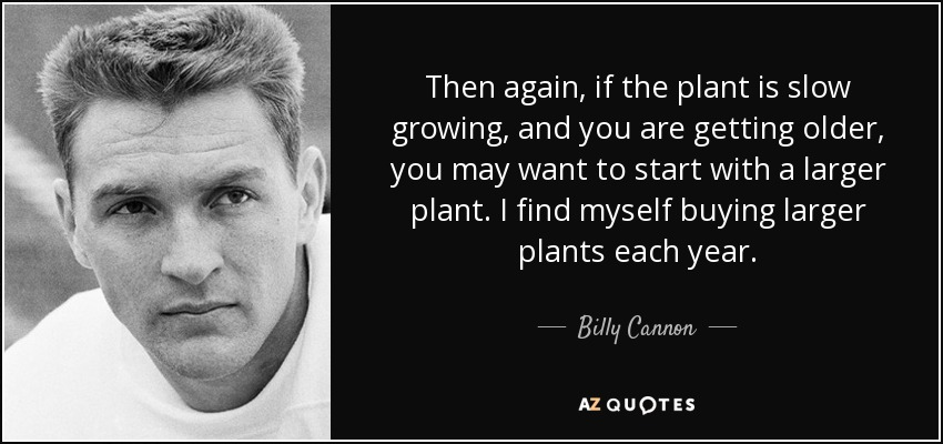 Then again, if the plant is slow growing, and you are getting older, you may want to start with a larger plant. I find myself buying larger plants each year. - Billy Cannon