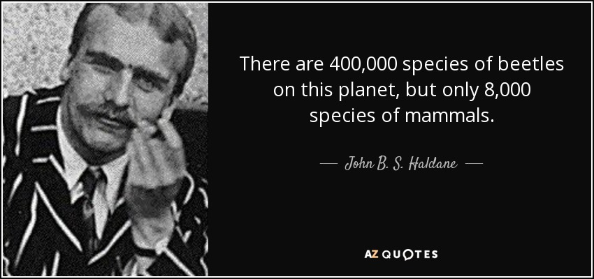 There are 400,000 species of beetles on this planet, but only 8,000 species of mammals. - John B. S. Haldane