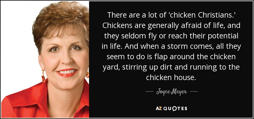 There are a lot of 'chicken Christians.' Chickens are generally afraid of life, and they seldom fly or reach their potential in life. And when a storm comes, all they seem to do is flap around the chicken yard, stirring up dirt and running to the chicken house. - Joyce Meyer