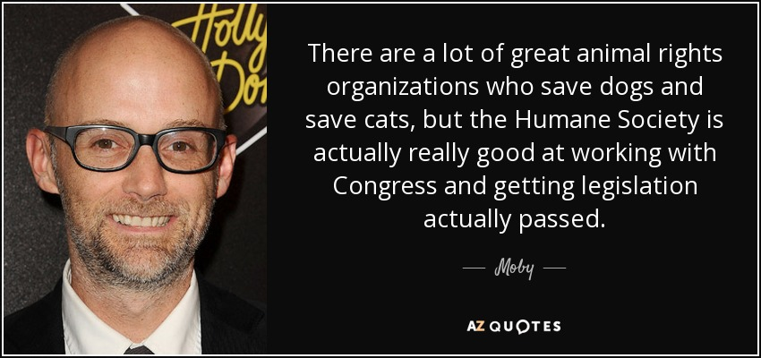 There are a lot of great animal rights organizations who save dogs and save cats, but the Humane Society is actually really good at working with Congress and getting legislation actually passed. - Moby