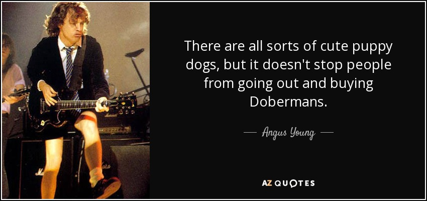 There are all sorts of cute puppy dogs, but it doesn't stop people from going out and buying Dobermans. - Angus Young
