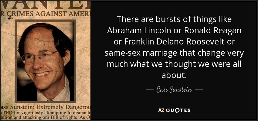 There are bursts of things like Abraham Lincoln or Ronald Reagan or Franklin Delano Roosevelt or same-sex marriage that change very much what we thought we were all about. - Cass Sunstein