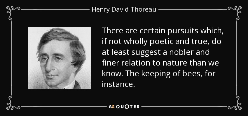 There are certain pursuits which, if not wholly poetic and true, do at least suggest a nobler and finer relation to nature than we know. The keeping of bees, for instance. - Henry David Thoreau