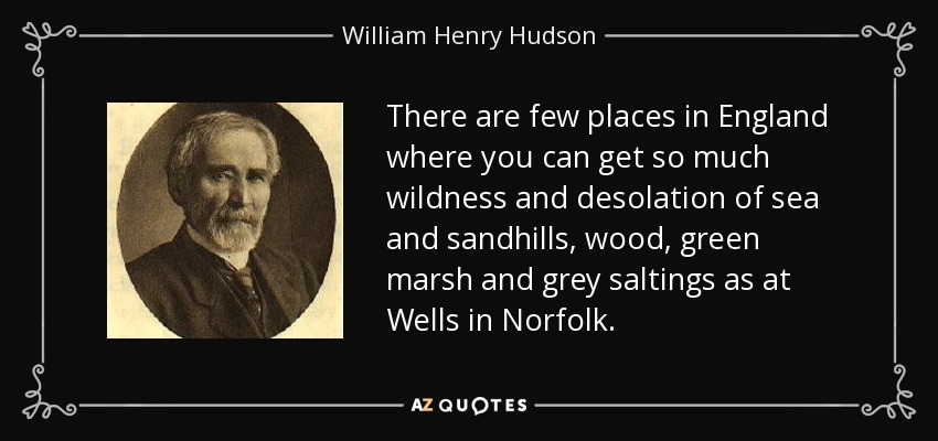 There are few places in England where you can get so much wildness and desolation of sea and sandhills, wood, green marsh and grey saltings as at Wells in Norfolk. - William Henry Hudson