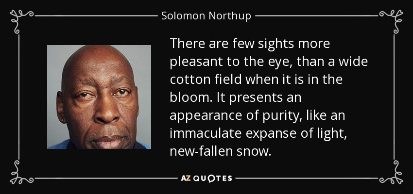 There are few sights more pleasant to the eye, than a wide cotton field when it is in the bloom. It presents an appearance of purity, like an immaculate expanse of light, new-fallen snow. - Solomon Northup