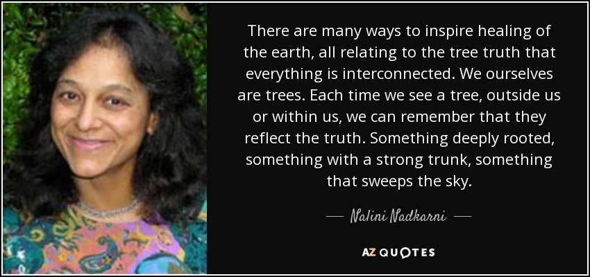 There are many ways to inspire healing of the earth, all relating to the tree truth that everything is interconnected. We ourselves are trees. Each time we see a tree, outside us or within us, we can remember that they reflect the truth. Something deeply rooted, something with a strong trunk, something that sweeps the sky. - Nalini Nadkarni