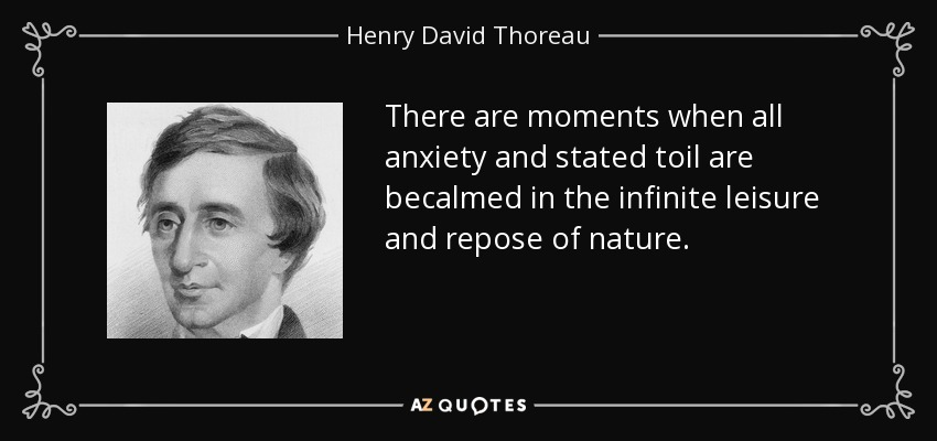 There are moments when all anxiety and stated toil are becalmed in the infinite leisure and repose of nature. - Henry David Thoreau
