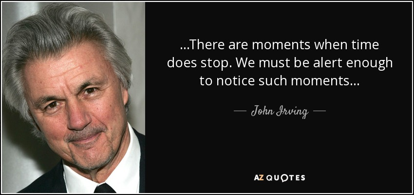 . . .There are moments when time does stop. We must be alert enough to notice such moments . . . - John Irving