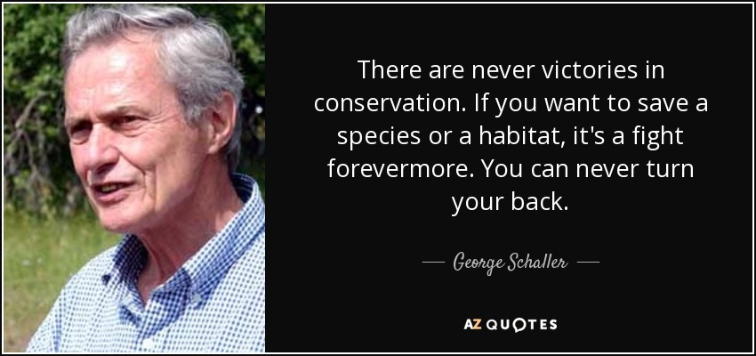 There are never victories in conservation. If you want to save a species or a habitat, it's a fight forevermore. You can never turn your back. - George Schaller