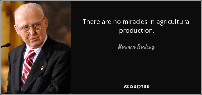 There are no miracles in agricultural production. - Norman Borlaug