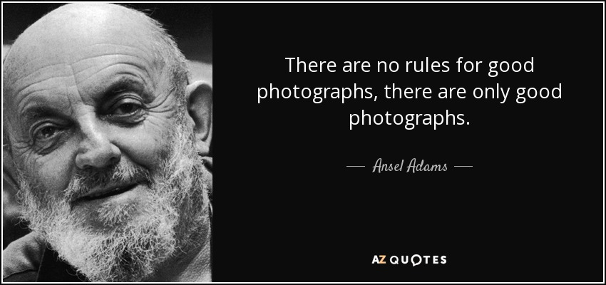 There are no rules for good photographs, there are only good photographs. - Ansel Adams