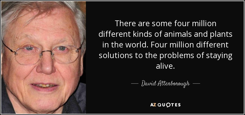 There are some four million different kinds of animals and plants in the world. Four million different solutions to the problems of staying alive. - David Attenborough