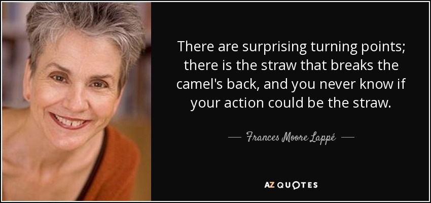 There are surprising turning points; there is the straw that breaks the camel's back, and you never know if your action could be the straw. - Frances Moore Lappé