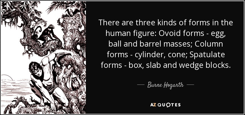 There are three kinds of forms in the human figure: Ovoid forms - egg, ball and barrel masses; Column forms - cylinder, cone; Spatulate forms - box, slab and wedge blocks. - Burne Hogarth