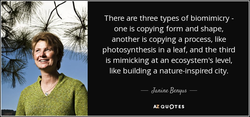 There are three types of biomimicry - one is copying form and shape, another is copying a process, like photosynthesis in a leaf, and the third is mimicking at an ecosystem's level, like building a nature-inspired city. - Janine Benyus