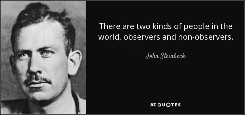 There are two kinds of people in the world, observers and non-observers. - John Steinbeck