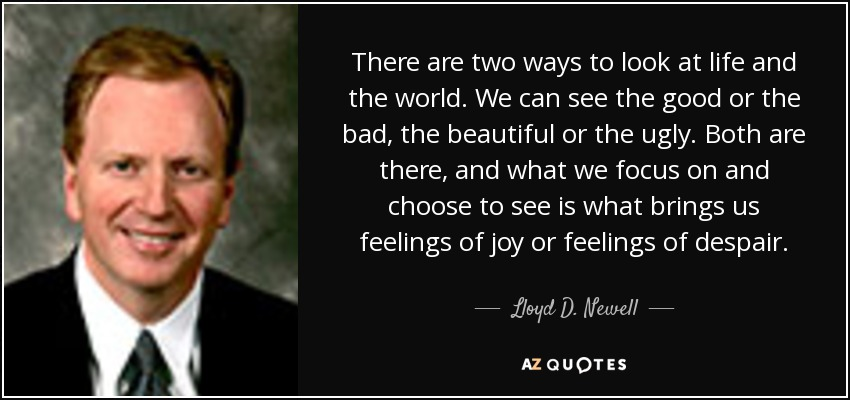 There are two ways to look at life and the world. We can see the good or the bad, the beautiful or the ugly. Both are there, and what we focus on and choose to see is what brings us feelings of joy or feelings of despair. - Lloyd D. Newell